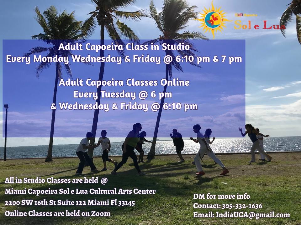 Adult Online & Studio Classes