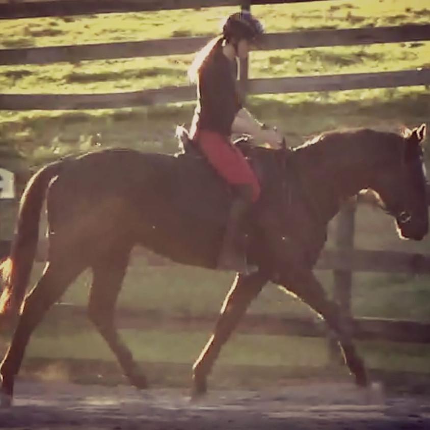 Heart Horsemanship Clinic