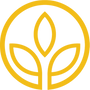 Growth Icon Yellow.png