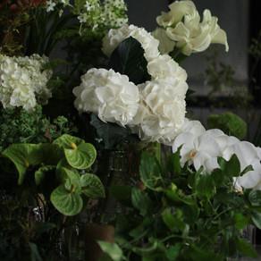 白グリーンのお花
