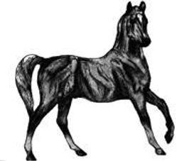 black horse fine foods logo.jpg