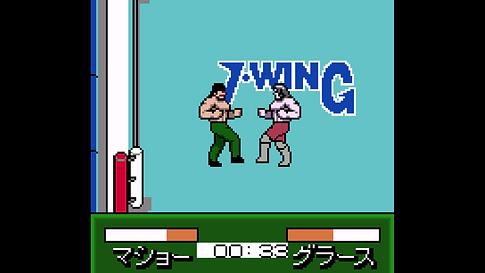 Pocket Pro Wrestling