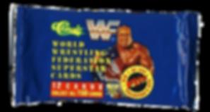 WWF Classic 1991