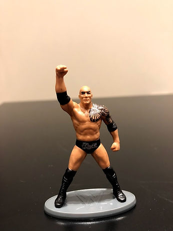 IMG_9353.jpgWWE Collectors 5-Pack