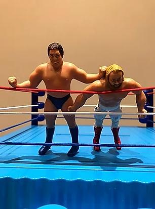 WWF Wrestling Superstars Bendies