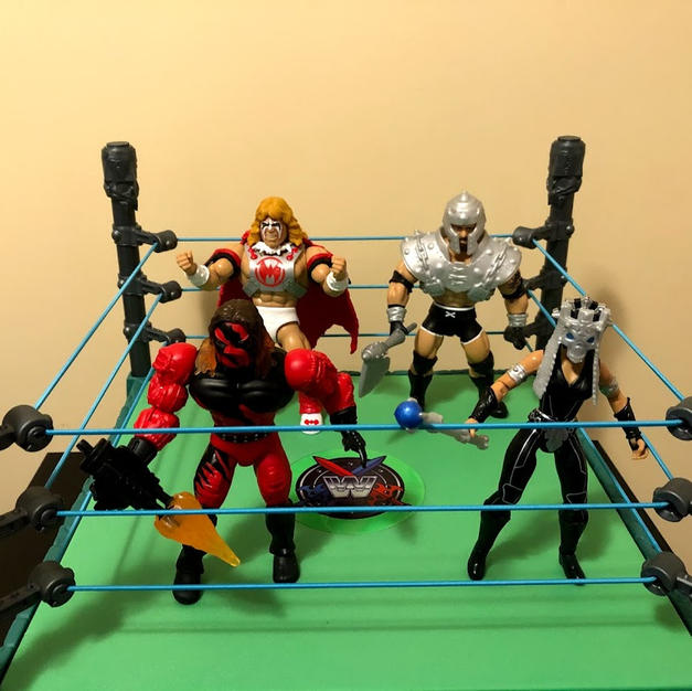 Masters of the WWE Universe Series 6