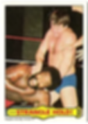 Topps WWF 1985.png