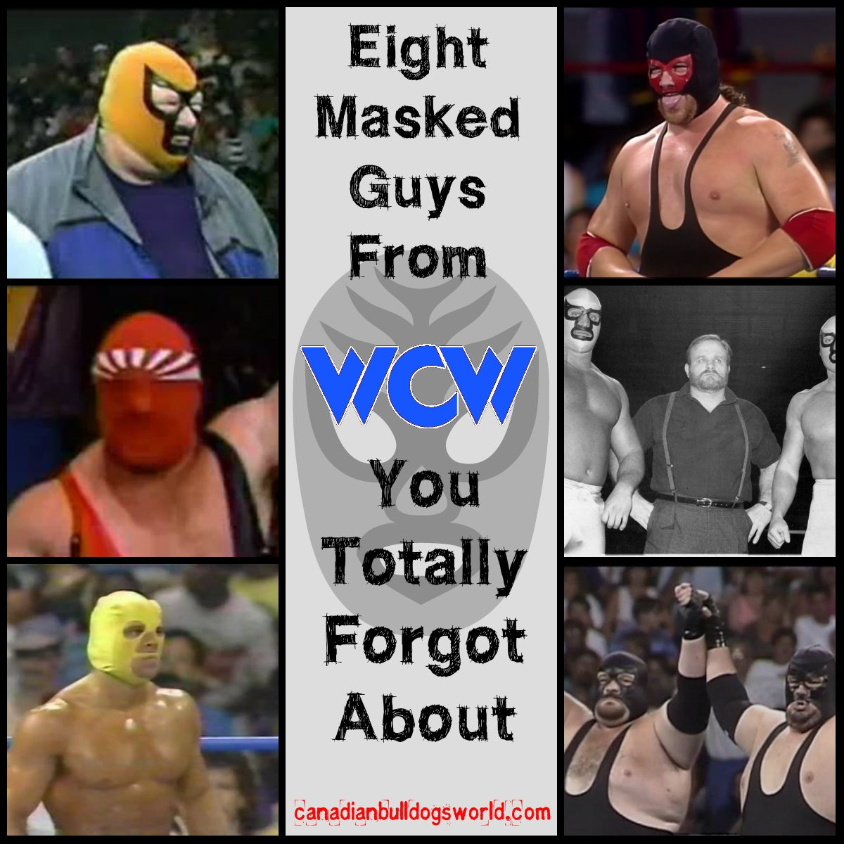 Eight Masked Guys From WCW You Totally F
