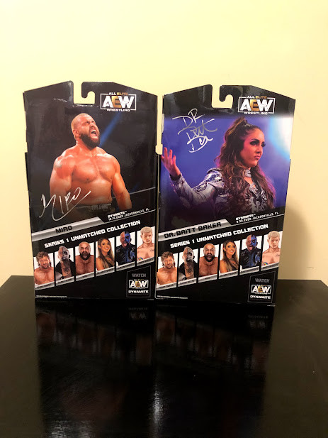 AEW Unmatched Series 1