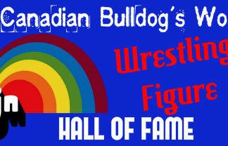 Canadian Bulldog's World LJN Wrestling F