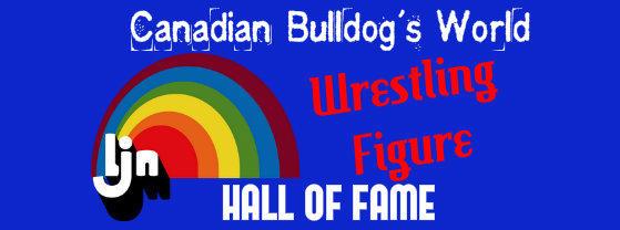 Canadian Bulldog's World LJN Wrestling Figure Hall of Fame