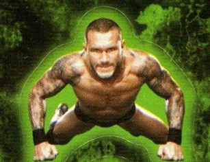 200 WWE Stickers For Less Than Two Bucks