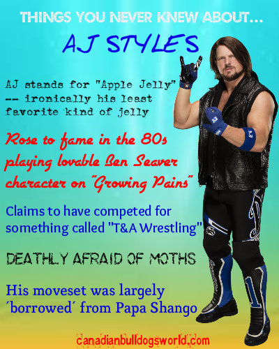 Things You Never Knew About AJ Styles