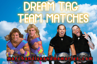 10 Dream Tag Team Matches