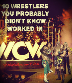 10 Wrestlers You Probably Didn't Know Worked In WCW