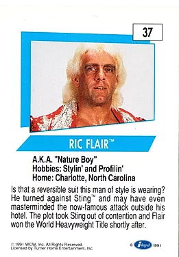 Ric Flair2.png