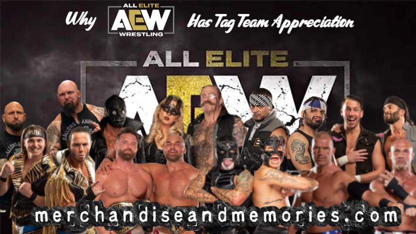 Why AEW Has Tag Team Appreciation