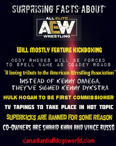 Surprising Facts About AEW