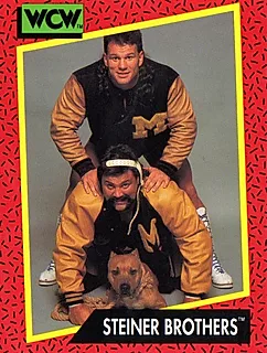 Steiner Brothers.png