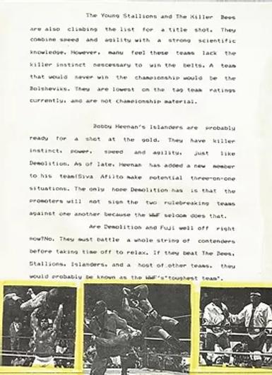 Wrestling Magazine