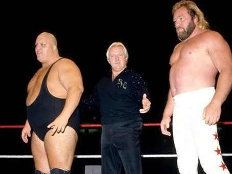 Tag Team Spotlight: Bundy & Studd