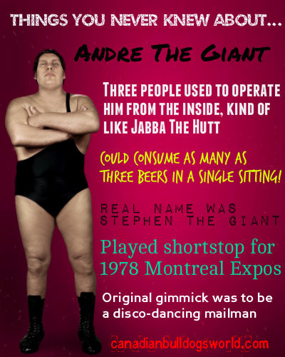 Things You Never Knew About Andre The Gi