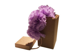 Frida - Purple