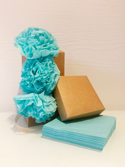 Frida - Light Blue
