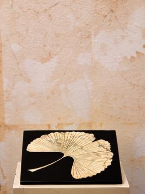 Misure l 20 x p 20     Piastra decorativa Ginko Biloba    Pietra       Produzione artigianale