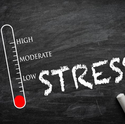 Stress-und Burnouttherapie_Stressprävention_Stressmanagement_Stressphase_Nebennierenschwäche