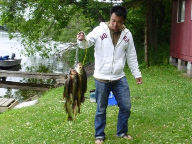 Stringer Fish