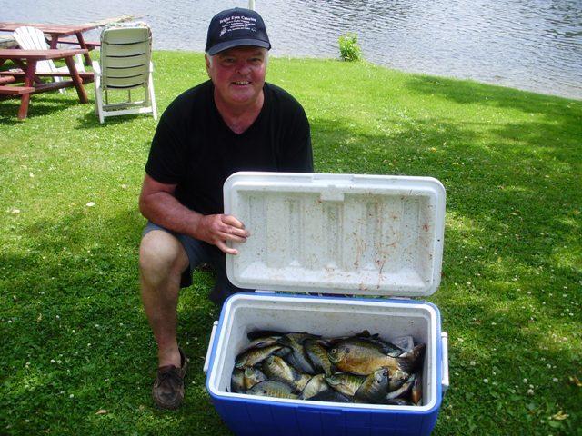 Nice Bluegill Catch