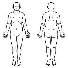 人体図.jpg