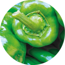 CHILE POBLANO.png