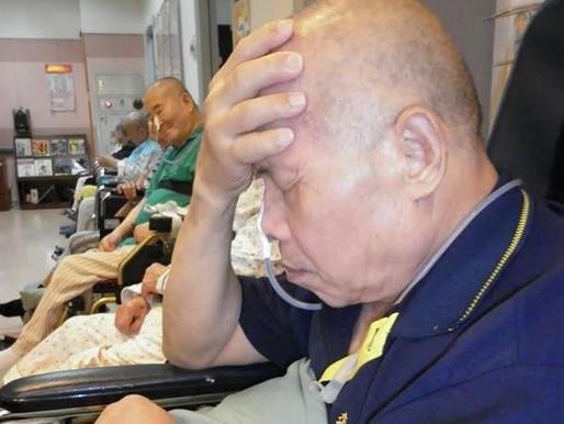 【新聞分享】鼻胃管灌食痛苦!大象族移除不是夢