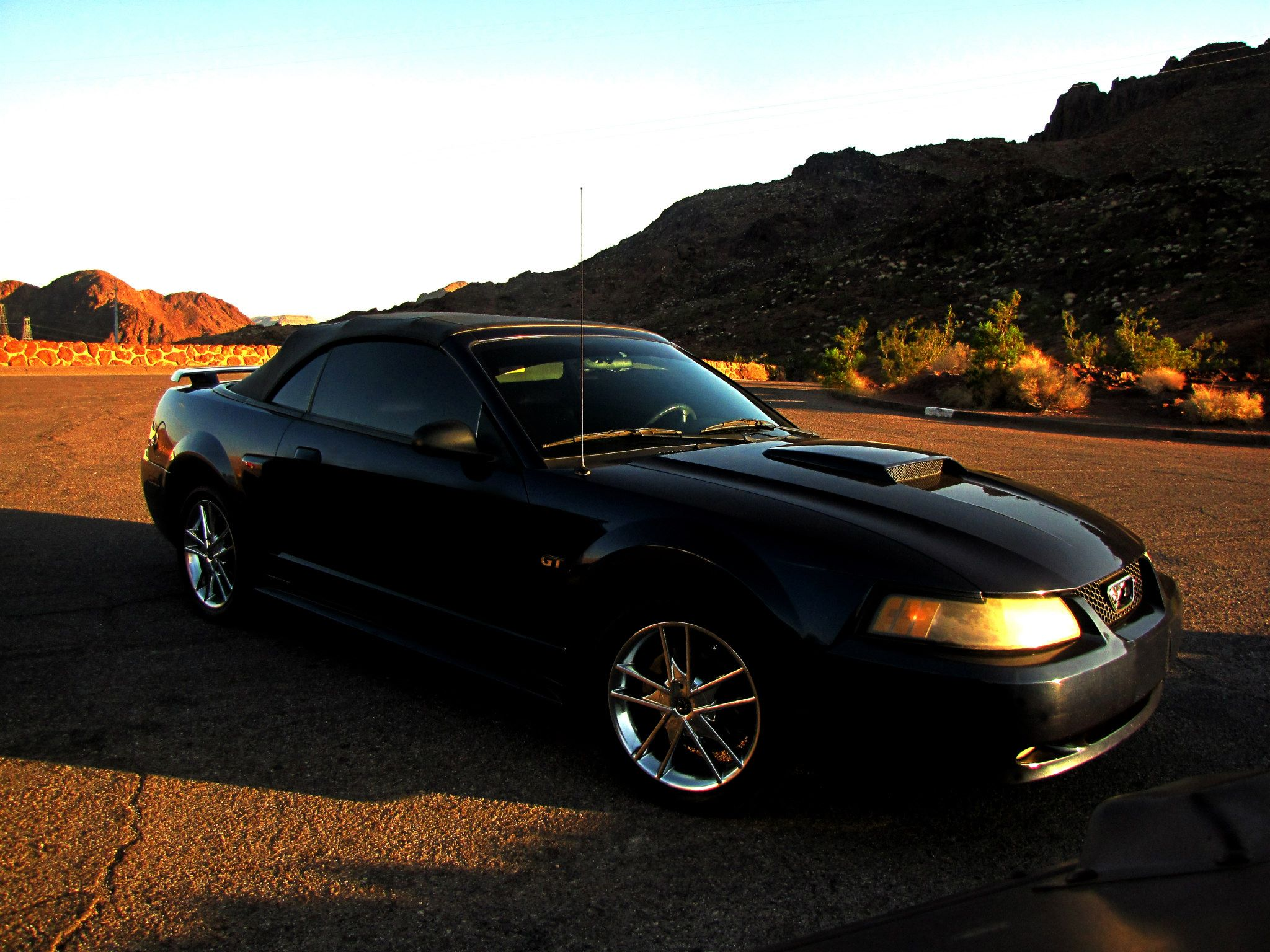 2002 MUSTANG GT PICTURE CAR
