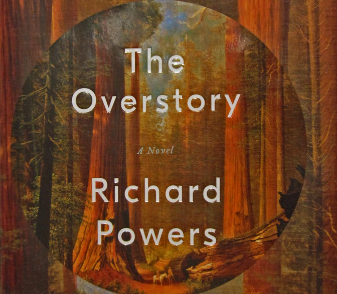 Book Review –The Overstory  – A novel by Richard Powers.