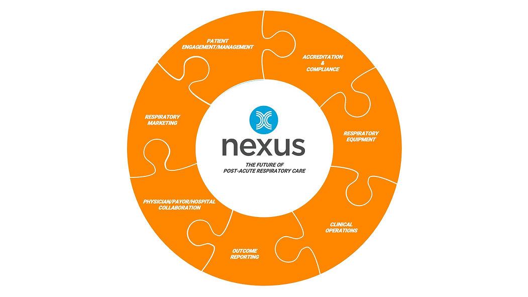Nexus Puzzle.jpg