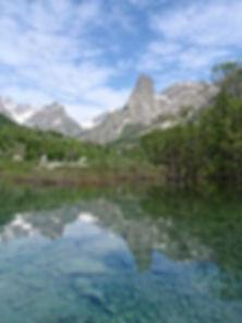 Provenzale specchiata nel lago