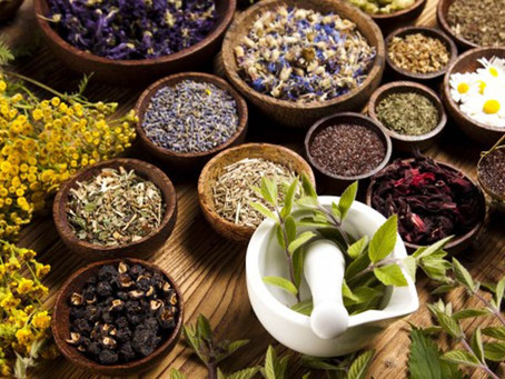 9 of the World's Most Popular Herbal Medicines