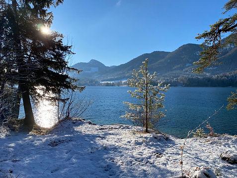 Fuschlsee im Winter.JPG