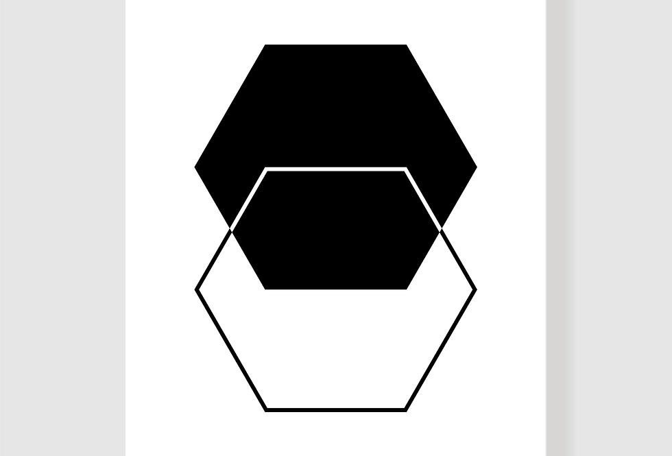 Quadro Hexa P&B