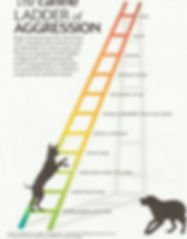 Canine ladder of aggression.jpg