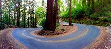circular road_edited.jpg