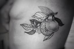 Tangerine.JPEG