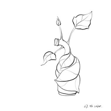 Bottle_Leaf.jpg