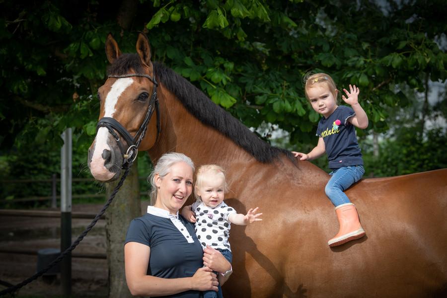 Fotoshoot paarden familie