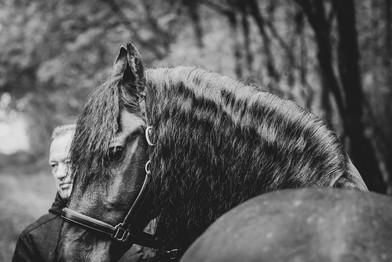 fotoshoot-paard-hond-4443.jpg