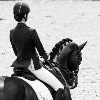 fotoshoot-paard-hond-0816.jpg