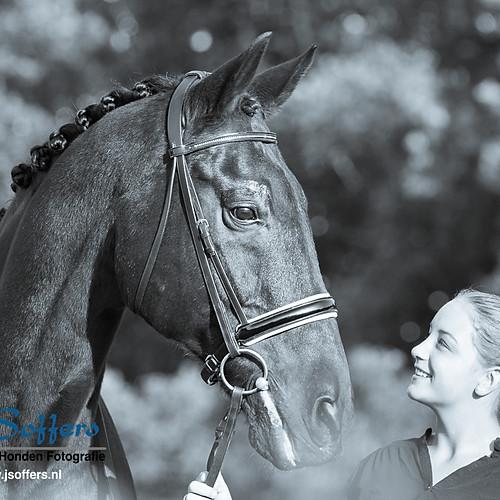Fotoshoot Paard & Ruiter - Avana & Sambucca